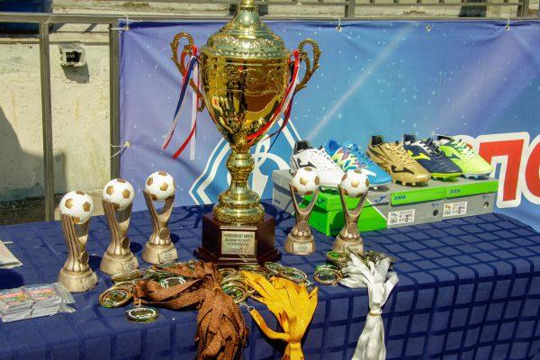 Чемпионат мира по мини-футболу в Пермском крае